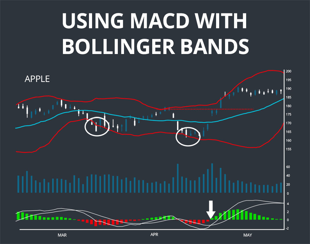bollinger band w-bottom