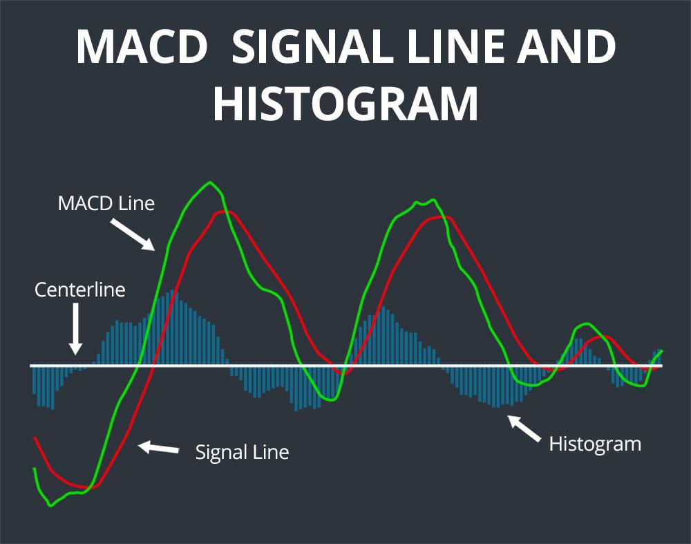 signal line
